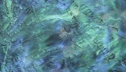 Art Epox_Wicked Deep Reef