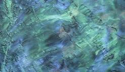 Decorative Flooring_Wicked Deep Reef